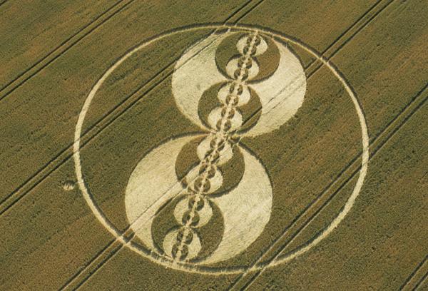 Круги-знаки на поле
