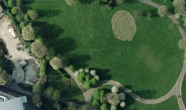 "The world's largest ""fingerprint"""