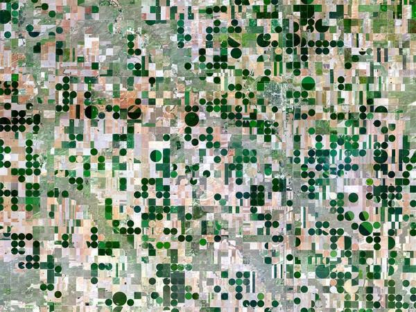 Field in Edson, Kansas, USA