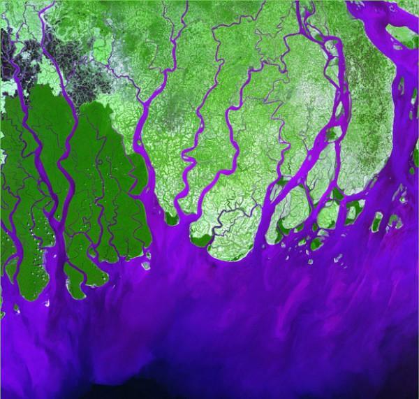 Дельта реки Ганг