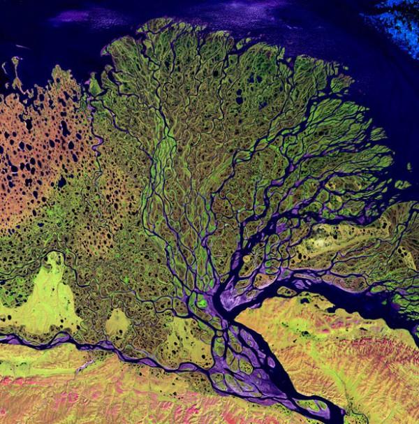 Дельта реки Лена, Россия