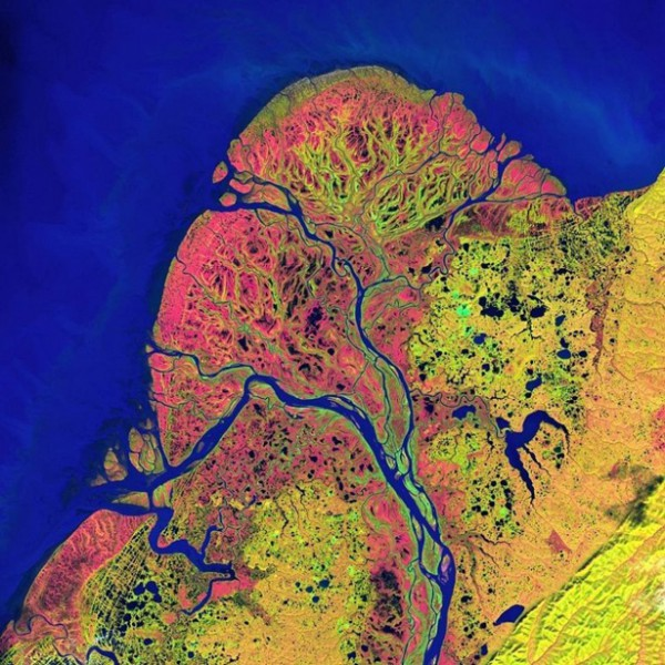 The Delta Of The Yukon