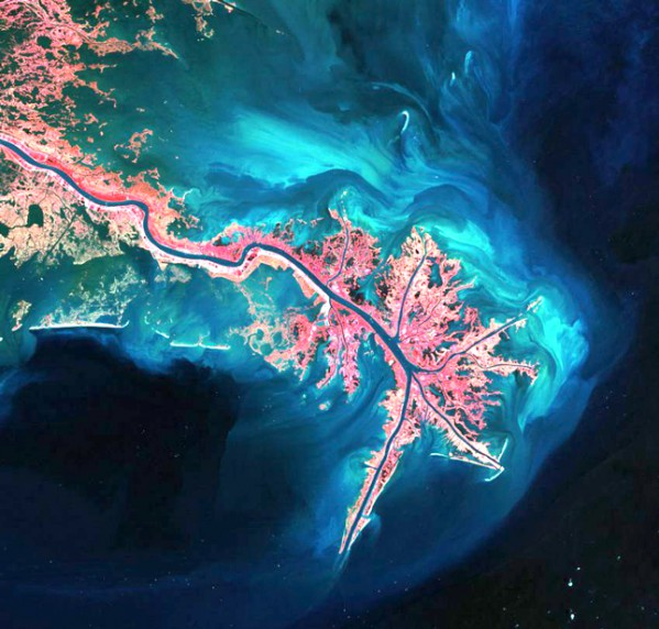 The Delta of the Mississippi river
